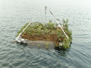 A nesting raft showing carpeted ramp, PVC frame, rails, and eagle guard.