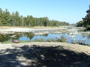O'Neal Lake after the Drawdown