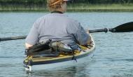 Crooked Lake Loons