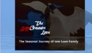 The Uncommon Loon FilmPresentation